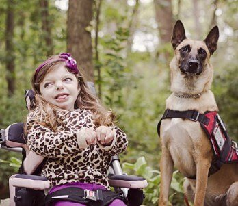 Child with malinois guard dog from scotts k9