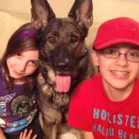 Children with German Shepherd Protection Dog