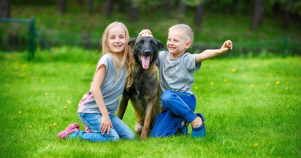 Children with Malinois Guard Dog Safe