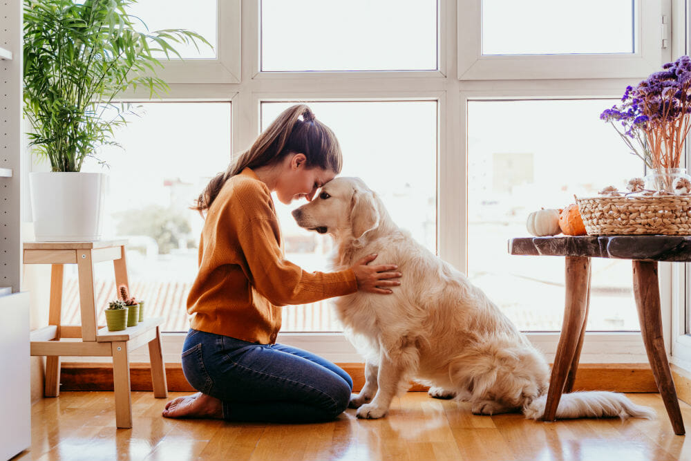 9 Best Dog Breeds for Women Living Alone